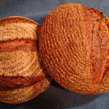 Tony Whole wheat and Rye  first overview