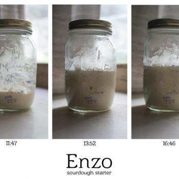 Enzo the Third recipe