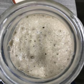 Penny jar shot