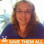 profile picture Debbie Tineo Bridges